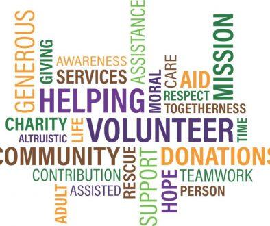 local nonprofit organizations